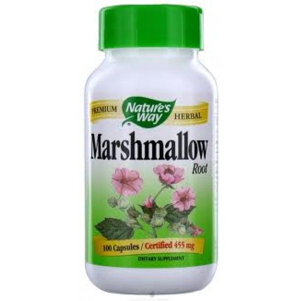 marshmallow herb for stomach pain, marshmallow herb marshmallows, marshmallow, where to buy marshmallow
