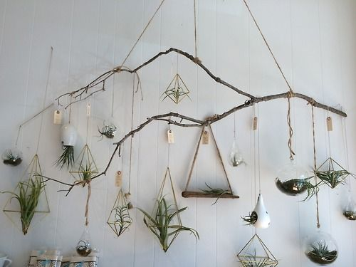 Using branches to hang planters