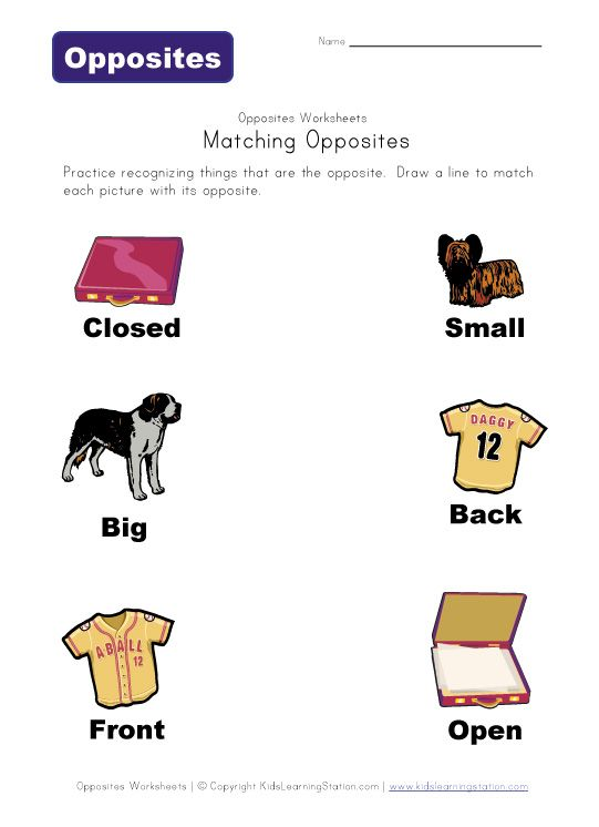 Opposites worksheets - Laminate for use with dry erase