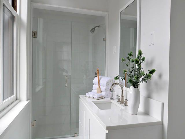 37 commonwealth ave 2 boston ma 02116 ticks small for Small bathroom plants