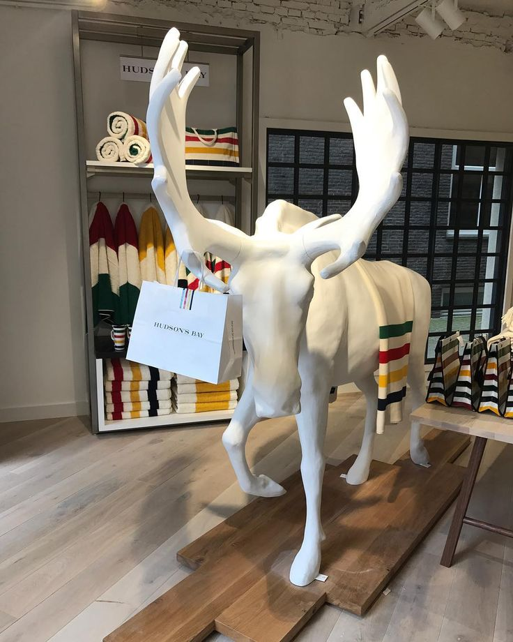 """HUDSON'S BAY COMPANY, Rokin, Amsterdam, The Netherlands, """"I'm no animal expert, but I'm pretty sure the male moose is about to propose..."""", photo by Roos Volkers, pinned by Ton van der Veer"""