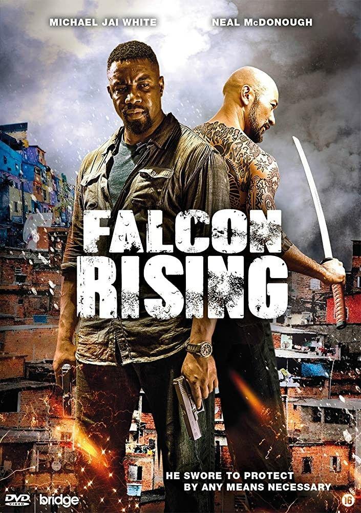 Pelicula De Estados Unidos Del Ano 2014 Titulo Falcon Rising Favela Venganza Fatal Venganza Fatal Director Ernie Barbara Peliculas Venganza Ano 2014