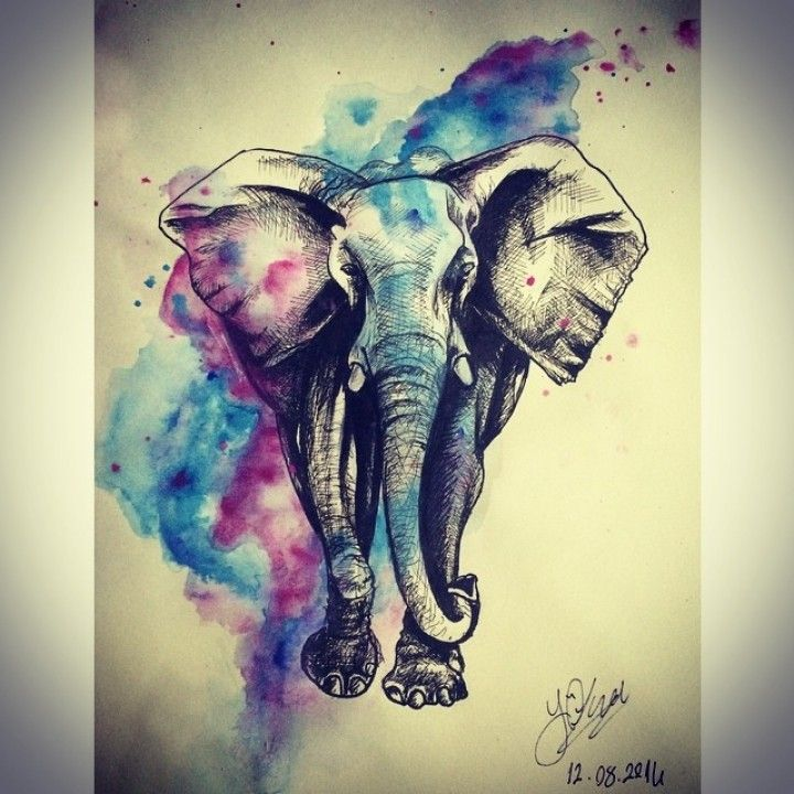 I like the watercolor placement   tattoo elephant with butterfly – Поиск в Google