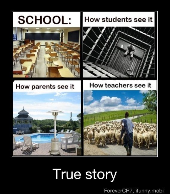 School.... ifunny