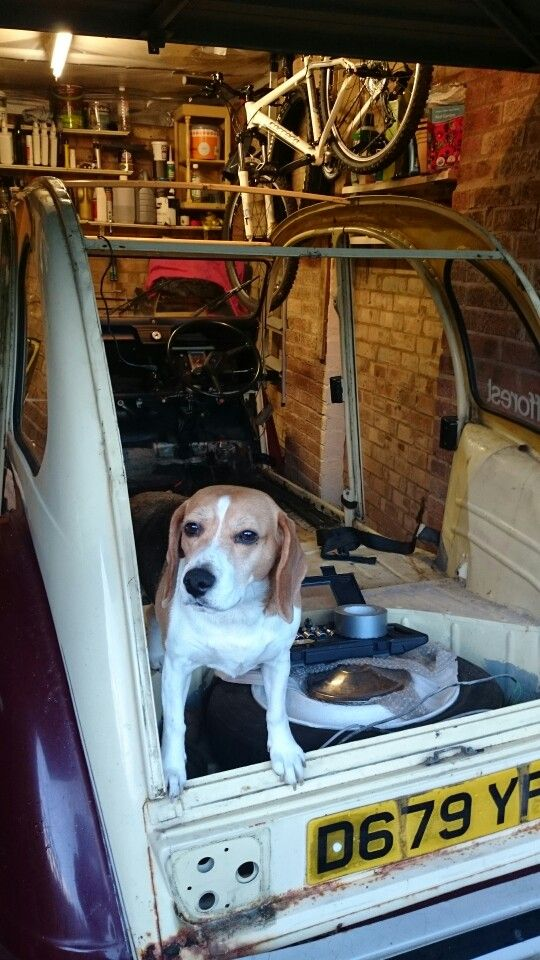 Citroen 2cv restoration beagle