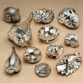 Spray paint shells, will do! by heidi