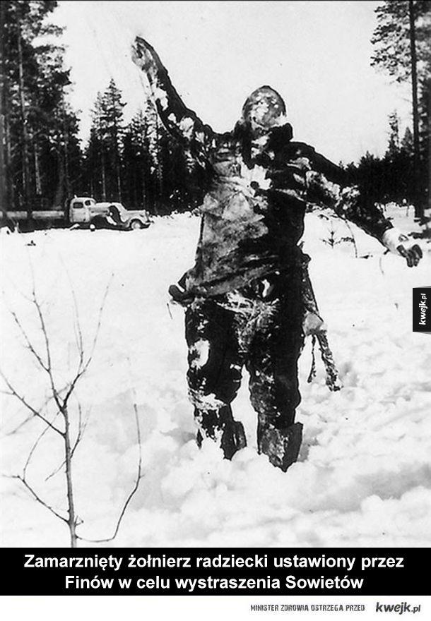 Zdjęcia historyczne wywołujące gęsią skórkę - wojna, rosja, czarnobyl, finlandia, bizon, usa, francja, gilotyna