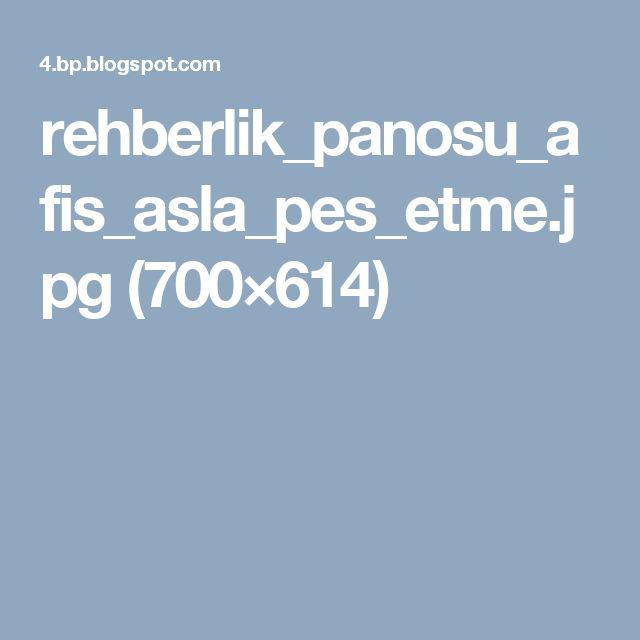 rehberlik_panosu_afis_asla_pes_etme.jpg (700×614)