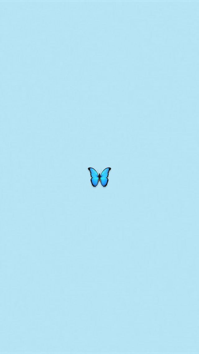 Blue Wallpaper Butterfly Emojii