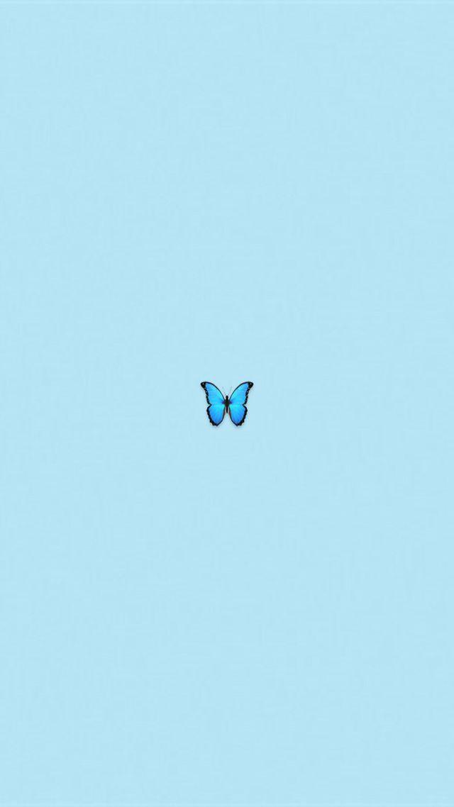 Cute Wedding Cartoon Wallpaper Blue Wallpaper Butterfly Emojii Blue Wallpaper Iphone