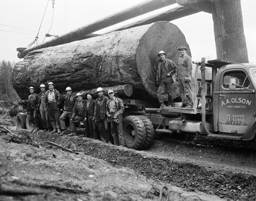old logging machinery | Thread: Logging Equipment Pictures
