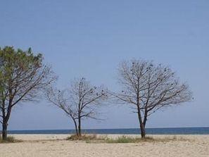 Het mooiste strand van de wereld vind je op Sicilie! | Reistips Italië