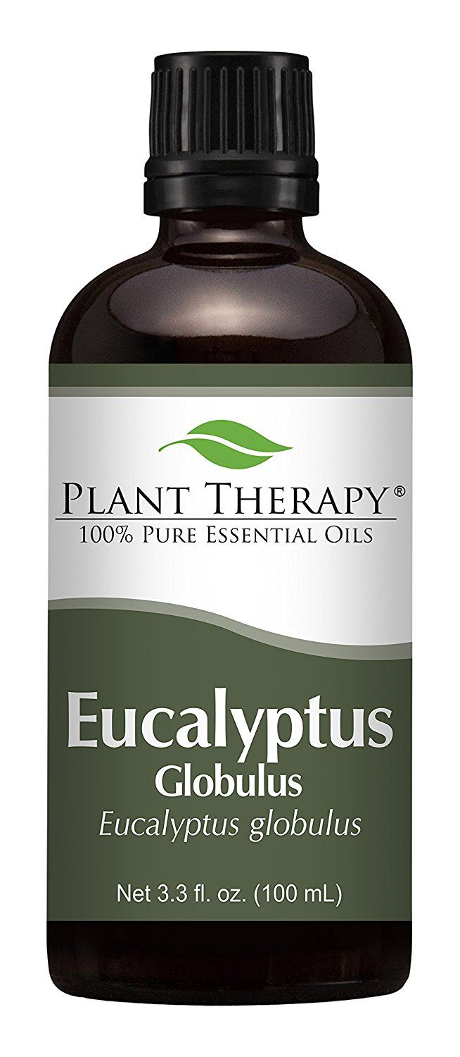 Eucalyptus Essential Oil (Globules). 100 ml (3.3 oz). 100% Pure, Undiluted, Therapeutic Grade * Check this awesome image  : lime essential oil