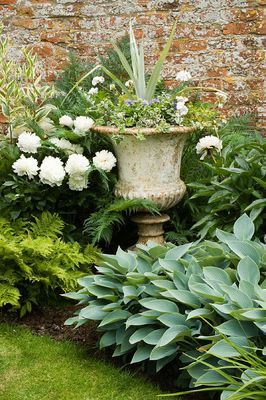 I would love this pretty vignette in my own garden. Credit: www.clivenichols.com metal urn planted with astelia, peony 'Kelways Glorious' and hostas.