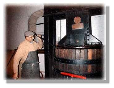 Quelle est la composition du vin ? Si l'alcool éthylique, c'est-à-dire l'éthanol, représente 7 à 16 % du volume totale du vin, cette boisson renferme bien d'autres composants. Table de dégustation...