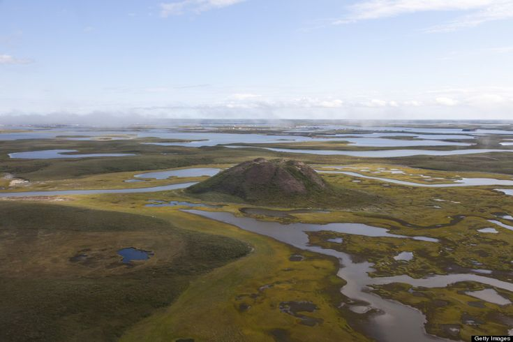 These are pingos in the Northwest Territories. The mounds are actually massive hunks of ice covered in earth