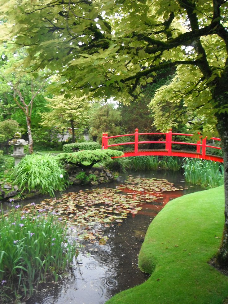 1000+ Images About Irish National Stud & Japanese Gardens