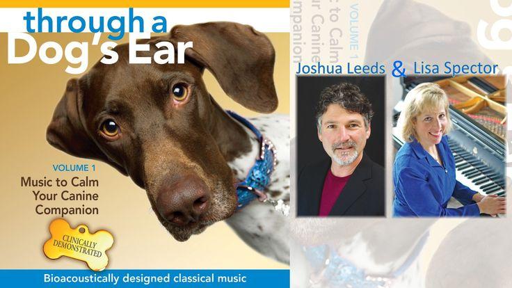 #90SecondSampler: Joshua Leeds & Lisa Spector – Through A Dog's Ear Vol. 1 @ThroughADogsEar #STMusic