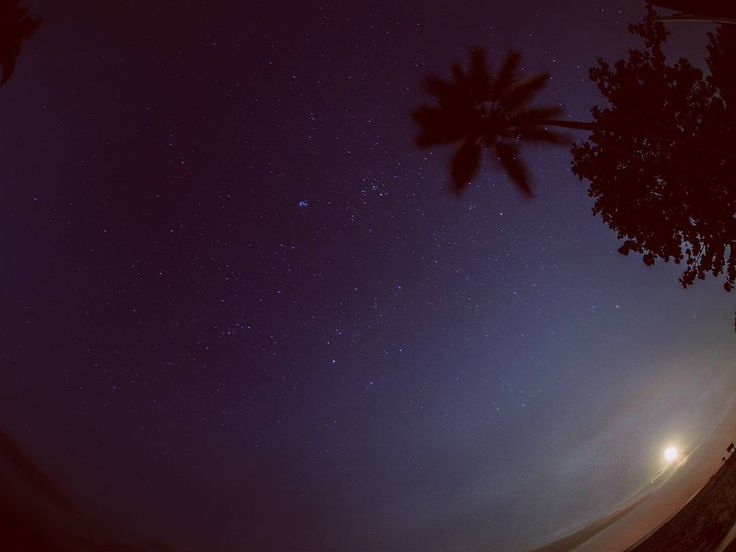 Moon and stars from Palomino, Colombia • • • #Moon #stars #nightsky #moonlight #space #nighttime #clearskies #beachlife #Colombia #guajira #night #travelphoto #travelphotography #starlight #sunset #sunrise #evening #seaside #bythesea #palmtrees #fisheye #olympus