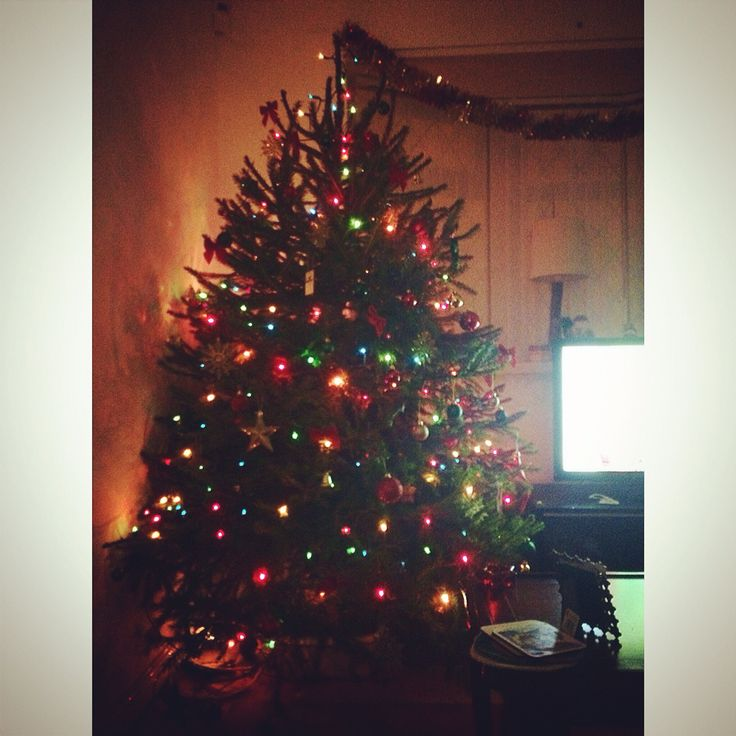 Our beautiful tree #christmas