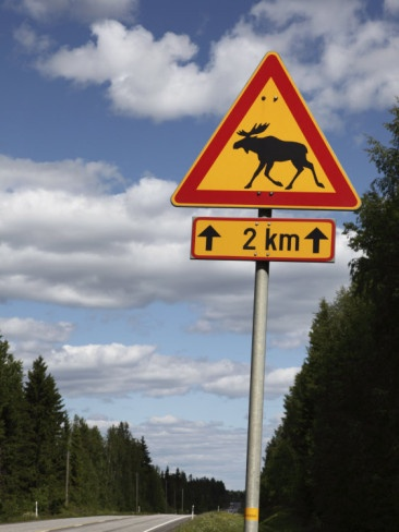 Elk crossing sign in Finland