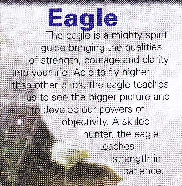 Eagle spiritual guide always thought one could only have a few animal guides but as it turns out it is limitless just like our love and hearts and life force energy some may stay for awhile while others enter your life for life and then some only stay for as little as a day or for as long as you need them ♡ It is always in your heart of hearts ♡