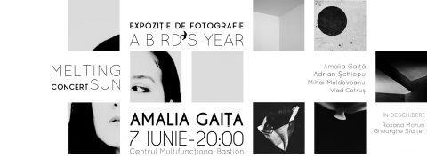Concert și expoziție de fotografie, Amalia Gaiță ‒ 7 iunie, ora 20, la Centrul Multifuncțional Bastion | Tourism Banat