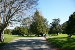 Harcourt Park in Upper Hutt, Wellington region! During filming, this park was transformed into the Gardens of Isengard!