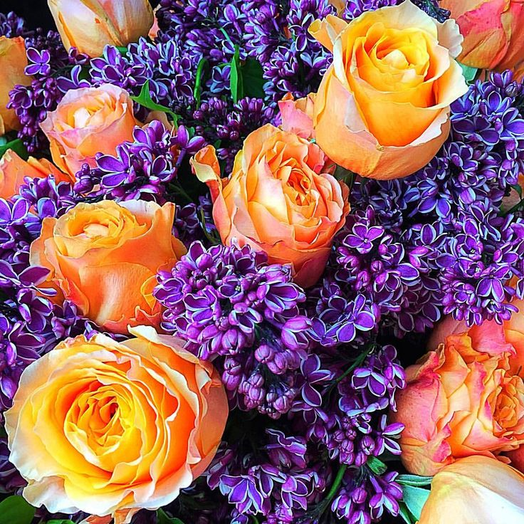 Be A Tall Poppy is an LA based Bloomerent florist.