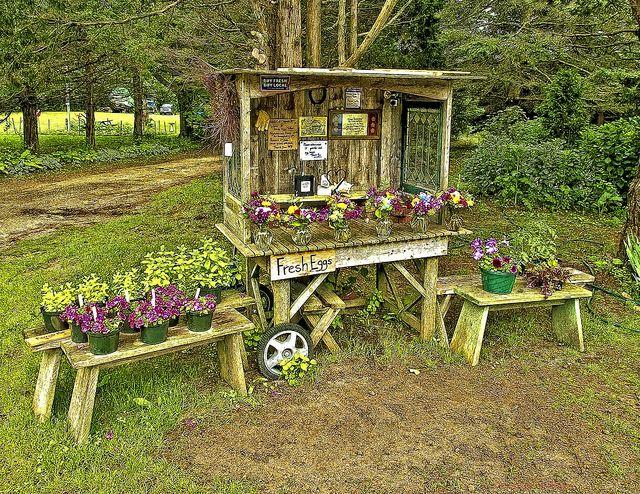 Buy Fresh Buy Local Farm stand, Backyard farming
