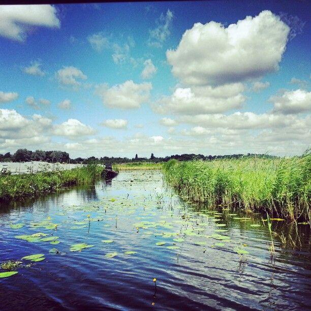 Broekerveiling, Broek op Langedijk