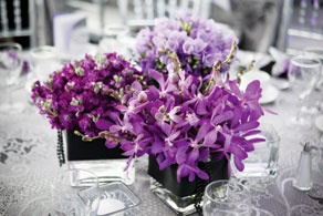 Floral Elements used freesia, stock and mokara orchids for this gorgeous table centre