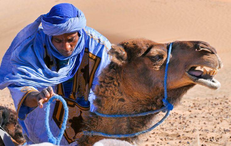 Man from  Merzouga Sahara - null
