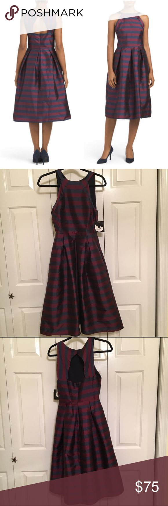 """Eva Franco striped red & navy party dress, size 4 Very classy evening dress with open back. Fits true to size. Come with comfortable slip/lining. Size 4 or small. Striped navy and red. Hits below knee/""""midi"""". New with tags. $160 dress on sale Eva Franco Dresses Midi"""