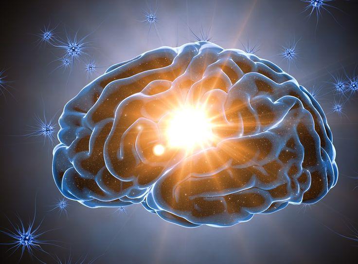 Πρακτορείο Υγείας: Οι πέντε μεγάλοι τύποι της προσωπικότητας έχουν το δικό τους εγκεφαλικό «προφίλ»