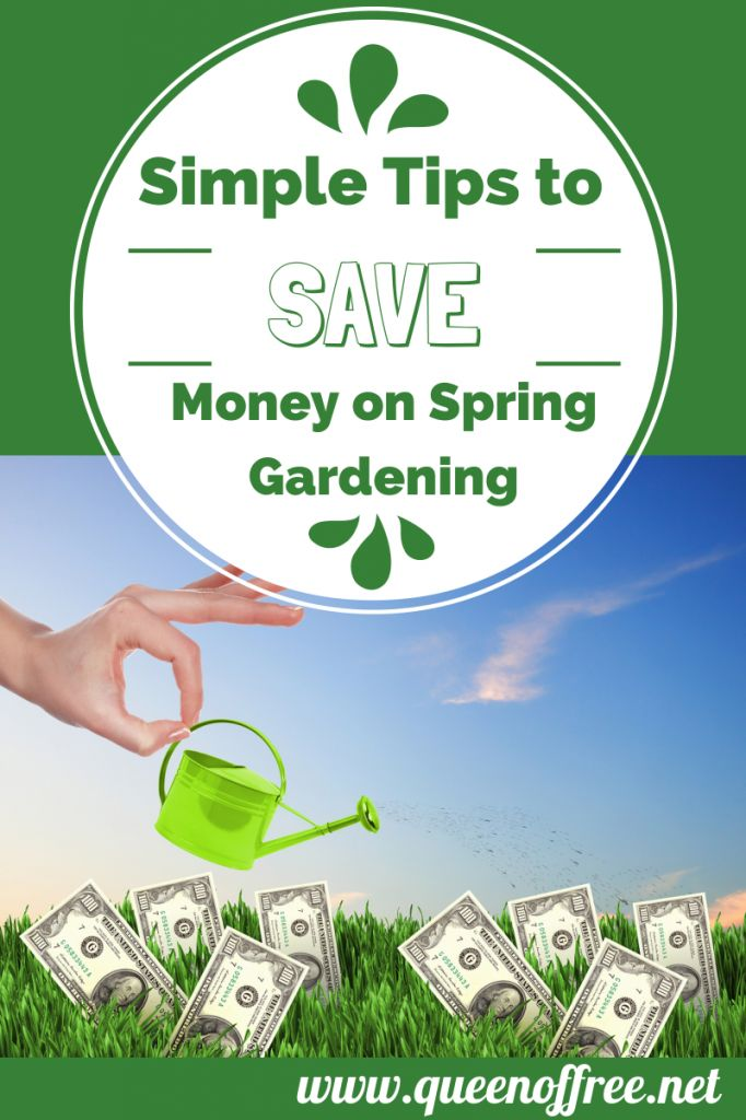 76 best images about gardening on pinterest gardens garden pallet and container gardening - Practical tips to make money from gardening ...