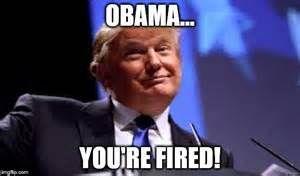 pro-trump memes - Bing images