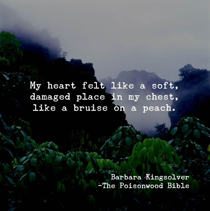 My heart felt like a soft, damaged place in my chest, like a bruise on a peach. ~Barbara Kingsolver, The Poisonwood Bible