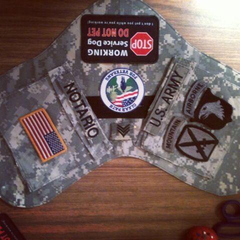 Getting A Ptsd Service Dog Badge