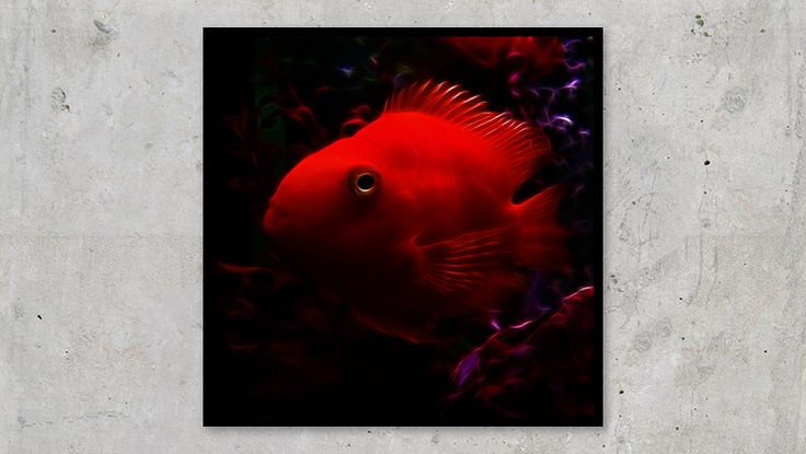 Red Electro Fish