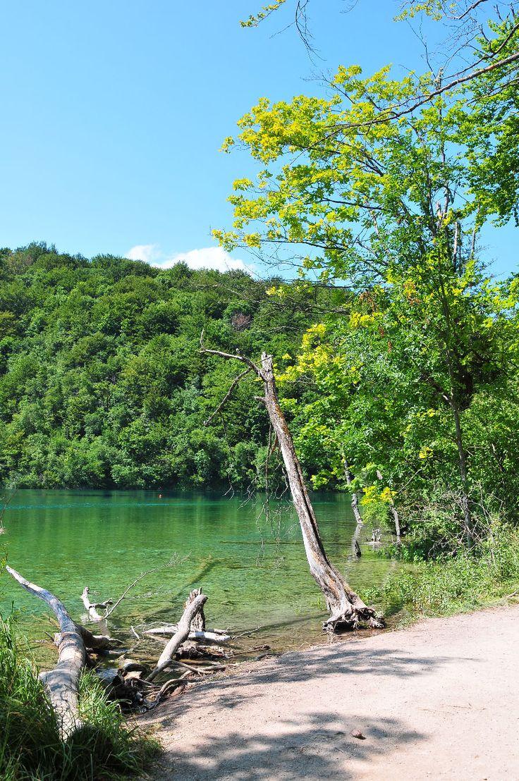 Road-trip en Croatie: étape et journée aux lacs et au parc national de Plitvice, en juillet. Départ de Split. Tarifs, informations pratiques, récit.