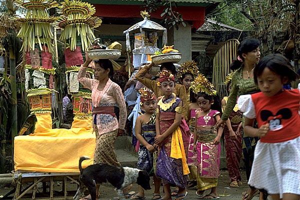 31 best CultureDaily LifeIndonesia images on Pinterest  Culture, Indonesia and Bali indonesia