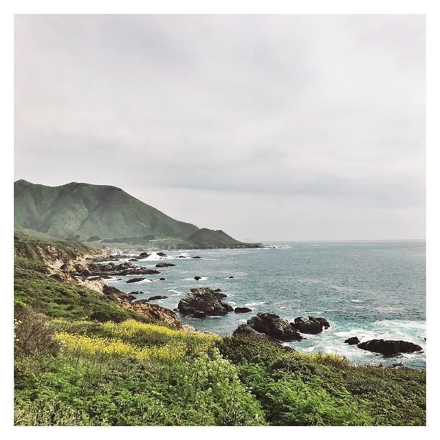 [ west coast road trip • drive down highway 1 along big sur ]  #bigsur #california #coastallife #californiarepublic #californiaadventure #monterey #sanfrancisco #losangeles #sandiego #roadtrip #westcoast #westcoastisthebestcoast #beachbum #travel #travelbug #wanderlust #travelblog #travellife #photography #travelphotography #travelphotos #inspiration #pacificocean #pacificcoastalhighway #getoutside #outdooradventures #bigsurlocals #montereybaylocals - posted by Kat Bourn…