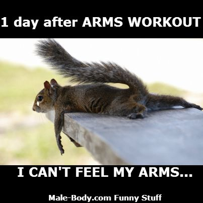 SORE ARMS the next Day of Arms Workout...