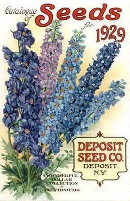 vintage-seed-packets