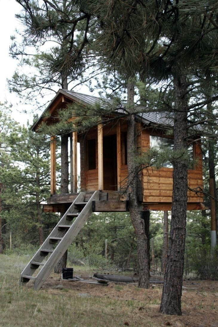 296 best treehouses images on pinterest treehouses architecture
