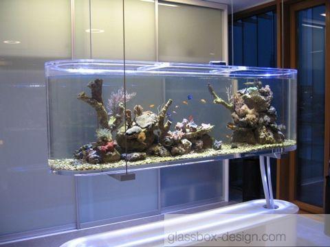 186 best Unusual Aquariums images on Pinterest Fish