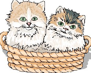 Two kittens for cross stitch