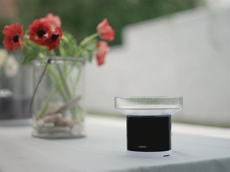 Add the Netatmo rain gauge to your Weather Station and be alarmed when it starts to rain in your garden.