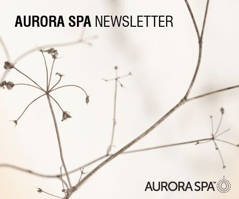 Relax and escape…stay in the know with all that's happening at Aurora Spa and in the world of wellness whilst receiving exclusive offers. Subscribe to our newsletter and receive a 20% discount on your first Aurora Spa Rituals purchase. Subscribe here: www.aurorasparetreat.com.au.  #relax #spa #AuroraSpa